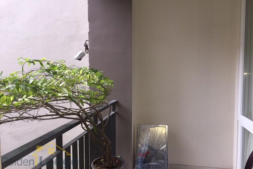 Studio on Dang Thai Mai street for rent Tay Ho balcony 4